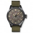 萬國TOP GUN海軍空戰部隊腕錶 (IW501902)